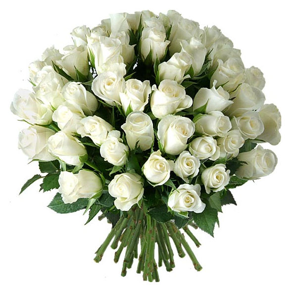 Small white roses flowers moldova small white roses mightylinksfo