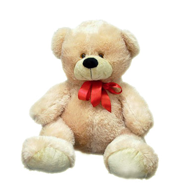Teddy Bear large with a bow