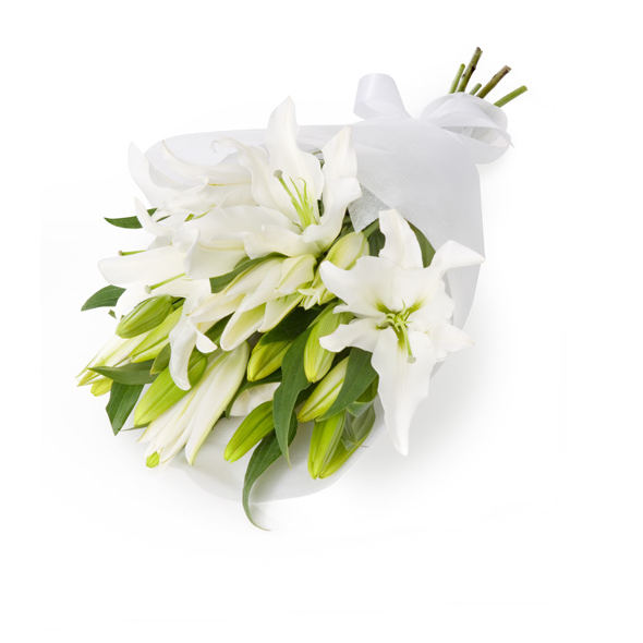 Одна лилия в подарок